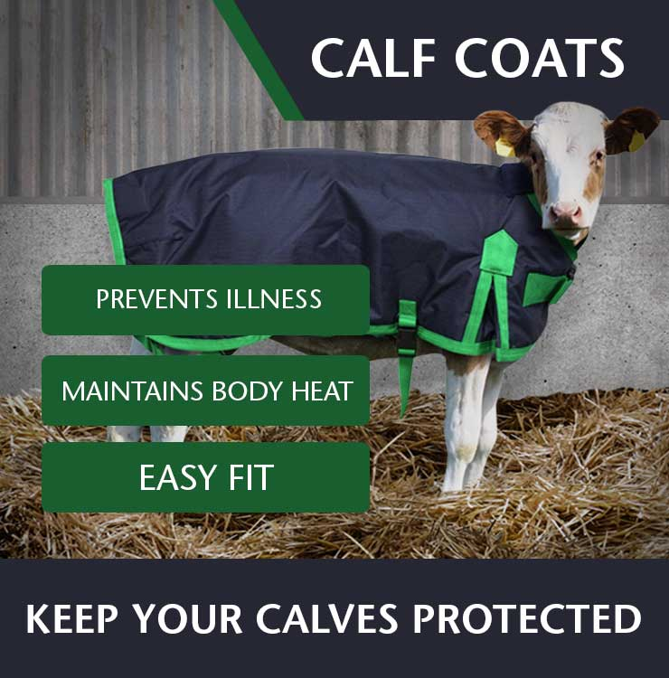 Fane Valley Calf Coats image