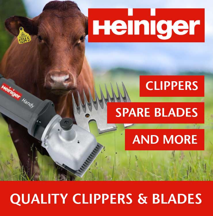 Heinger_Clippers image