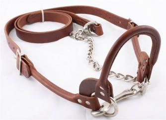 Classic Brown Leather Rolled Halter   image