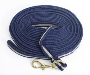 Coloured Soft Webbing Lunge Rein with Brass Clip  image